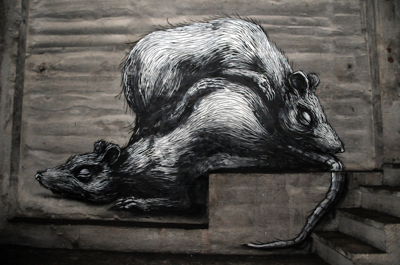 Work by Roa at The Underbelly Project in New York City. Photo by RJ Rushmore.
